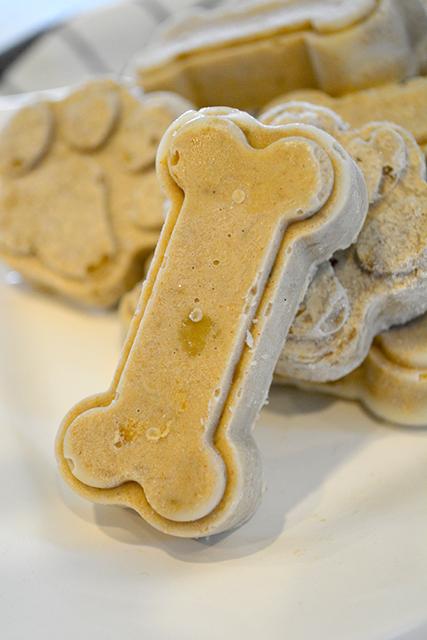 Peanut Butter and Banana Frozen Dog Treats_TBTP